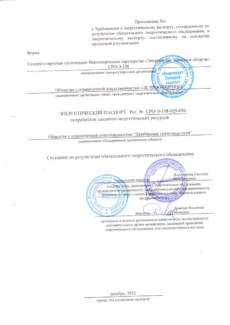 Энергетический паспорт ООО Лямбирские тепло-водо сети