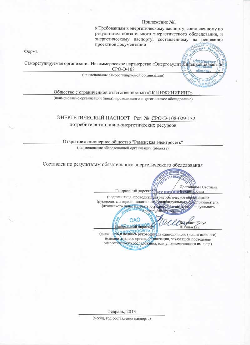Энергетический паспорт ООО Раменская Электросеть