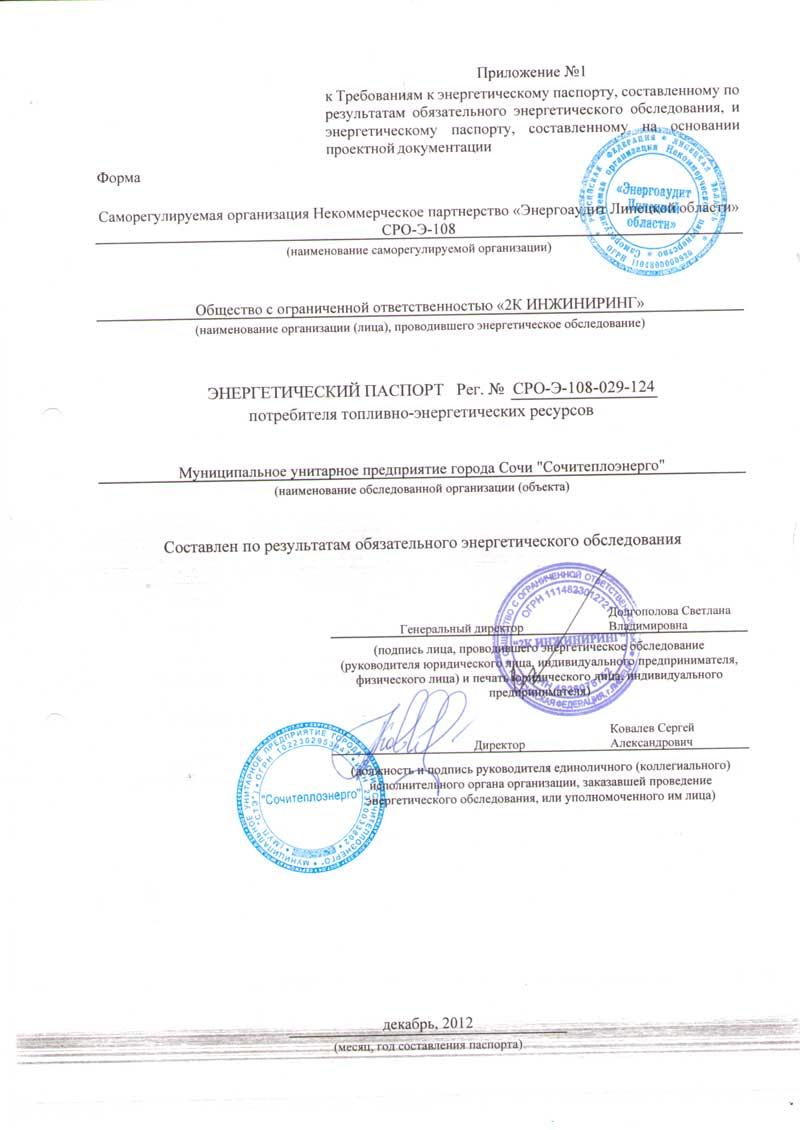 Энергетический паспорт МУП Сочитеплоэнерго