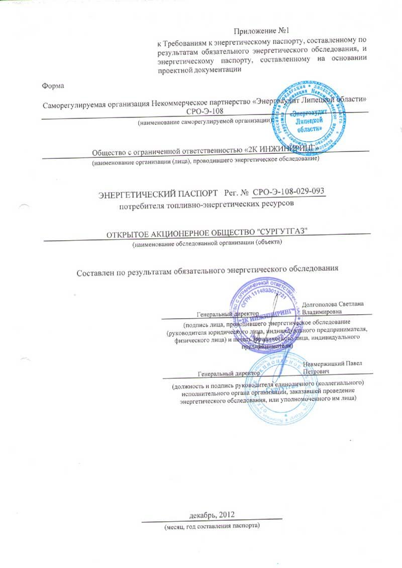 Энергетический паспорт ОАО Сургутгаз
